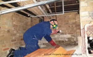 Property inspection reports in Sydney
